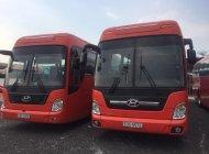 Bán Hyundai Universe năm 2008, màu đỏ, nhập khẩu Hàn Quốc giá 1 tỷ 350 tr tại Hà Nội