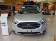 Bán xe Ford EcoSport đời 2019, ưu đãi hấp dẫn giá 598 triệu tại Hà Nội