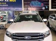 Cần bán xe Ford Everest sản xuất 2018, màu trắng, nhập khẩu giá 889 triệu tại Đồng Tháp