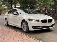 Bán BMW 5 Series 520i năm 2015, màu trắng, xe nhập giá 1 tỷ 390 tr tại Hà Nội