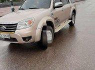 Bán Ford Everest năm sản xuất 2009, màu vàng, nhập khẩu giá 385 triệu tại Nghệ An