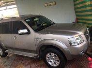 Cần bán xe số sàn Ford Everest đời 2008, màu bạc giá 250 triệu tại Trà Vinh