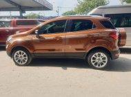 Cần bán lại xe Ford EcoSport Titanium sản xuất 2019, 580tr giá 580 triệu tại Tp.HCM