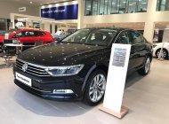 Volkswagen Passat 1.8 Bluemotion giá 1 tỷ 480 tr tại Quảng Ninh