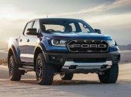 Cần bán xe Ford Ranger Raptor năm 2020, giá thấp, sẵn xe, giao nhanh toàn quốc giá 1 tỷ 198 tr tại Tây Ninh