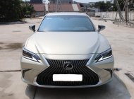 Cần bán xe Lexus ES 250 đời2020, màu xám, nhập khẩu nguyên chiếc giá 2 tỷ 500 tr tại Tp.HCM
