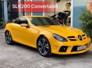 Cần bán gấp Mercedes SLK class năm sản xuất 2007, nhập khẩu nguyên chiếc giá 720 triệu tại Tp.HCM