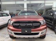 Ford Everest Trend ưu đãi khủng - LH: 0388.145.415 giá 992 triệu tại Tp.HCM