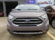 Bán xe Ford EcoSport 1.5L AT Titanium đời 2020, xe mới giá 620 triệu tại Tp.HCM