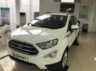 Bán xe Ford EcoSport 1.0AT Titanium 2020, màu trắng giá 689 triệu tại Hà Nội