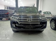 Bán Toyota Land Cruiser 4.6 nhâp chính hãng 2021, màu đen, nội thất nâu, xe sẵn giao ngay giá 4 tỷ 30 tr tại Hà Nội