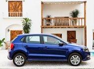 Bán ô tô Volkswagen Polo đời 2020, màu xanh lam, nhập khẩu giá 695 triệu tại Cần Thơ