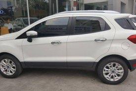 Cần bán xe Ford EcoSport Titanium đời 2018, giá cả ưu đãi, LH: 0918889278 giá 545 triệu tại Tp.HCM