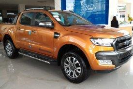 Cần bán Ford Ranger Wildtrak đời 2018, nhập khẩu nguyên chiếc bên Thái giá 885 triệu tại Tp.HCM