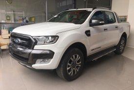 Cần bán xe Ford Ranger đời 2018, màu trắng, xe nhập giá cạnh tranh giá 925 triệu tại Tp.HCM