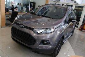 Ford Ecosport 2018 mang lại sự an toàn, đa tính năng cho khách hàng. LH: 0901.979.357 - Hoàng giá 648 triệu tại Đà Nẵng