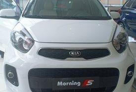 Kia Morning SAT chỉ cần 134.000.000đ để sỡ hữu được xe giá 134 triệu tại Tp.HCM