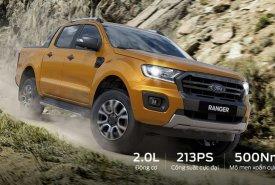 Bán ô tô Ford Ranger năm 2019, màu nâu vàng, nhập khẩu nguyên chiếc, giá chỉ 650 triệu giá 650 triệu tại Cần Thơ