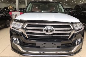 Cần bán xe Toyota Land Cruiser đời 2020, màu đen, xe nhập giá 9 tỷ 200 tr tại Hà Nội
