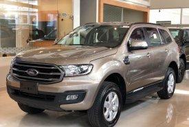 Bán ô tô Ford đời 2020, nhập khẩu nguyên chiếc giá 879 triệu tại Tp.HCM