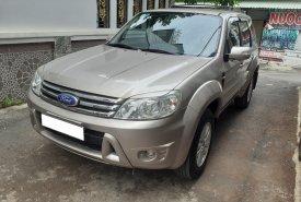 Cần bán gấp Ford Escape đời 2010, màu xám, giá tốt giá 325 triệu tại Tp.HCM